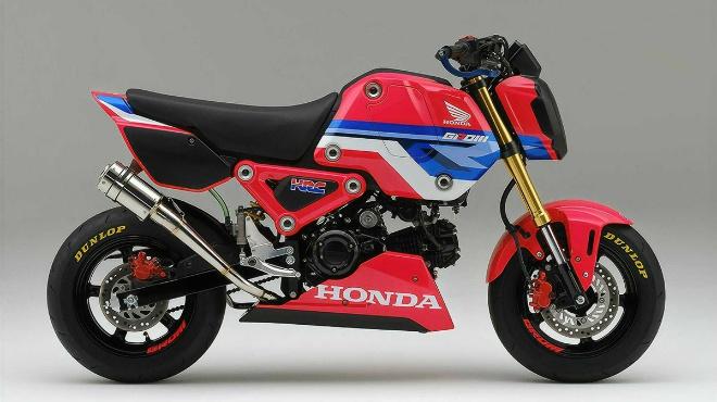 2021 Honda MSX125 Grom HRC đậm chất đua nhìn cực ngầu - 1